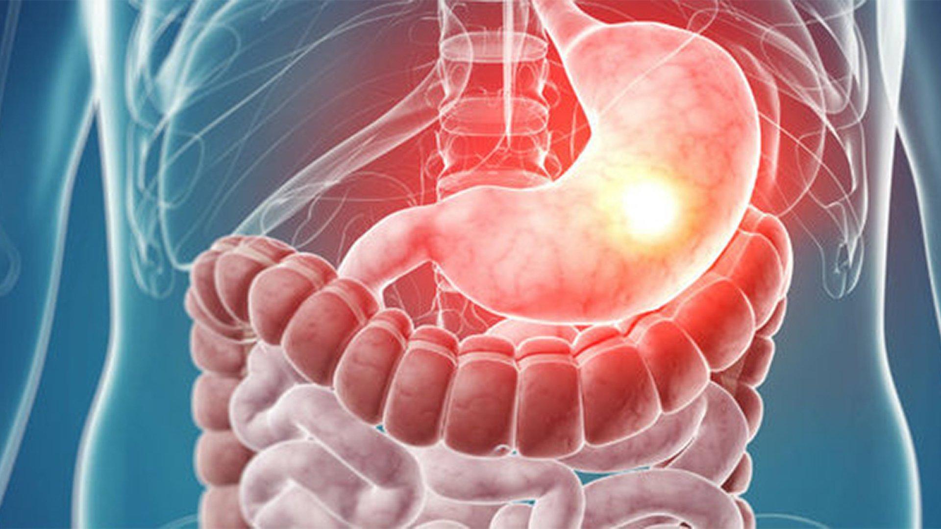 Gastroenterologia | Rede Clínica Médica